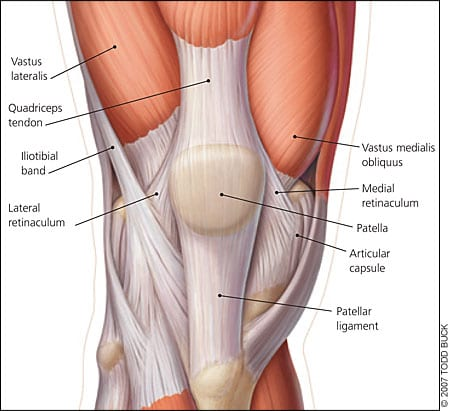 Knee pain | Patellofemoral joint pain | Pinnace Spine & Sports, Concord West | Chiro, Physio, Massage, Pilates